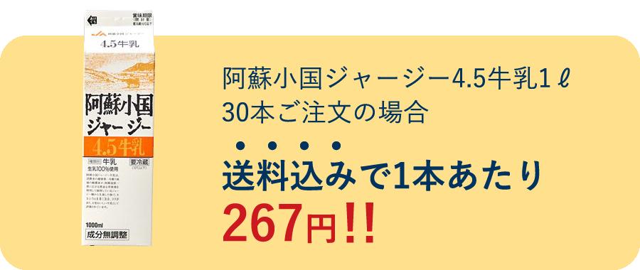 送料込みで1本あたり267円!!