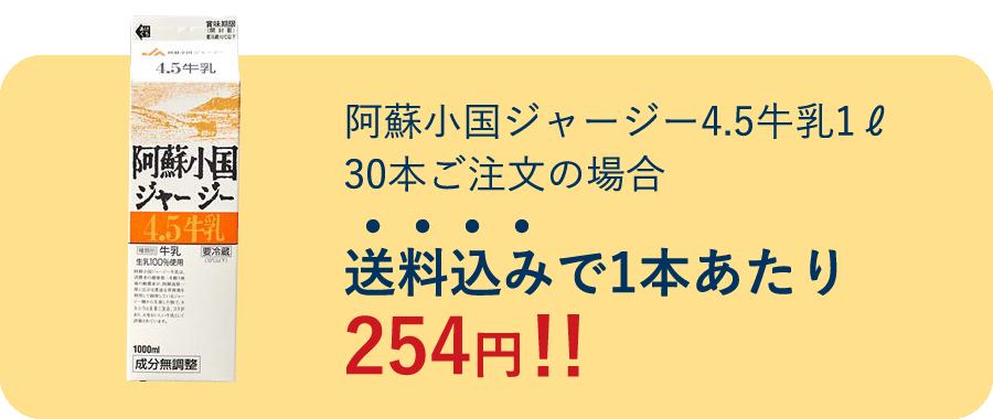 送料込みで1本あたり254円!!